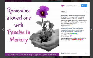 Pansies In Memory Instagram post