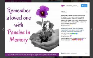 Pansies In Memory Instagram post